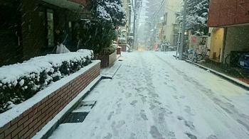 20180122大雪の初雪.jpg