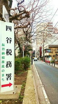 20180319桜と税務署.jpg